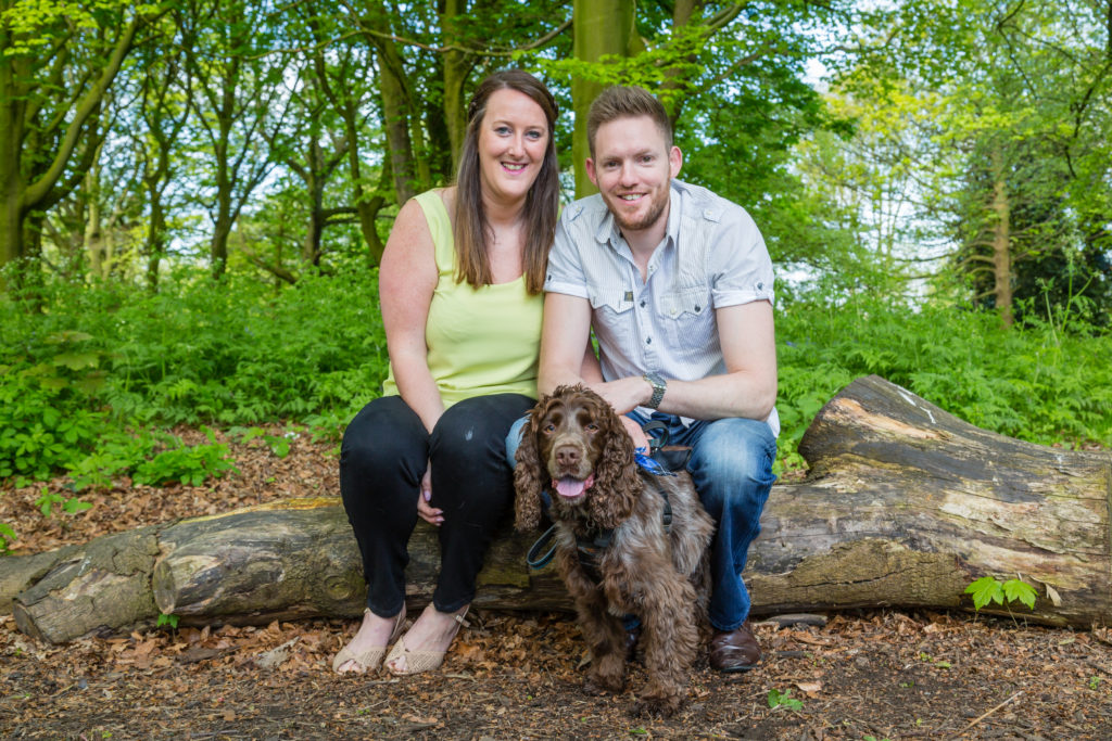 Couple sit on tree trunk during engagement photoshoot in West Yorkshire